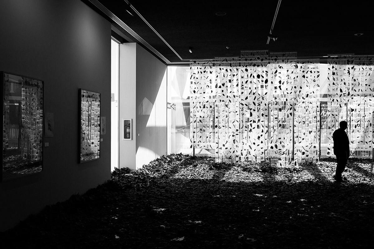 Exposición 'Bestiario Floral' - Fotografía: Miguel Jiménez