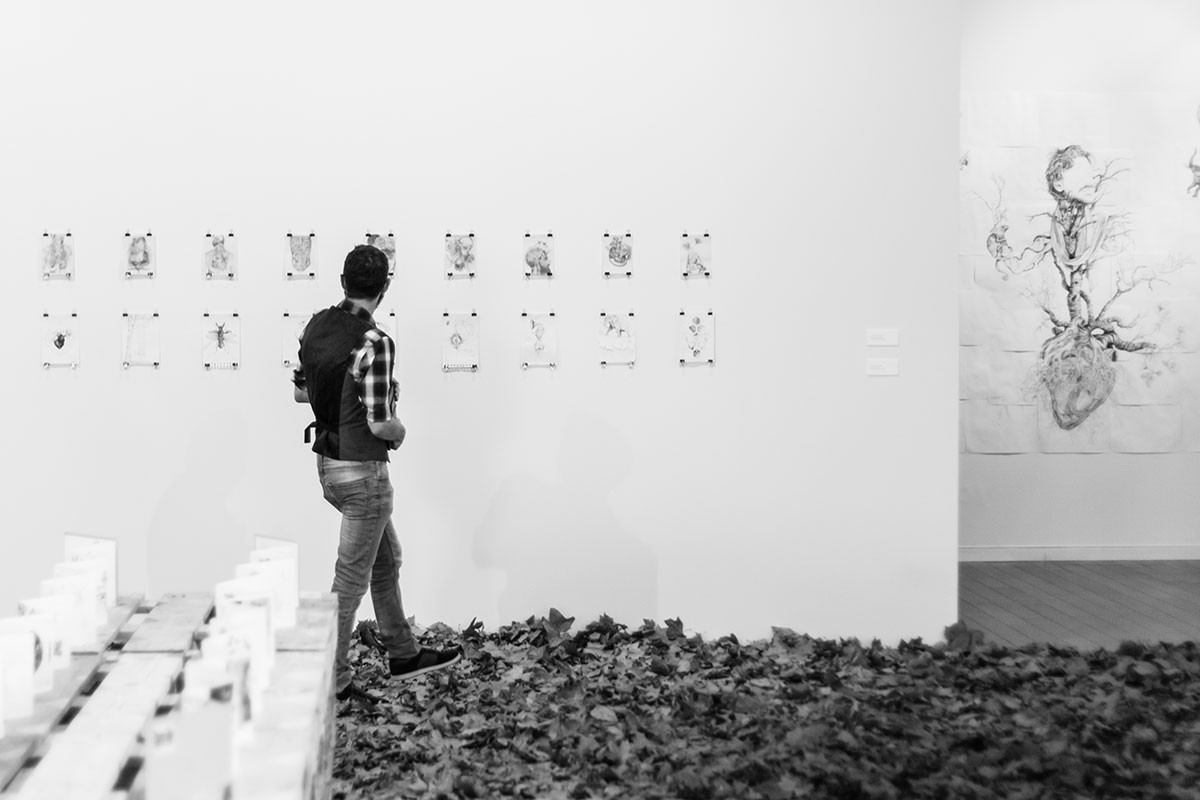 Exposición 'Bestiario Floral'