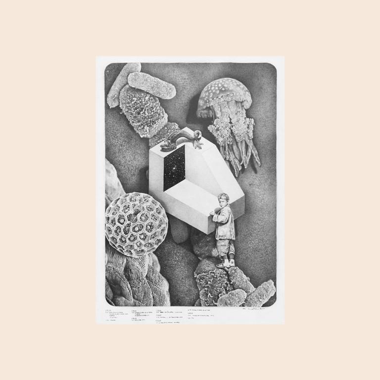 Los Paisajes Isométricos - Emmanuel Lafont