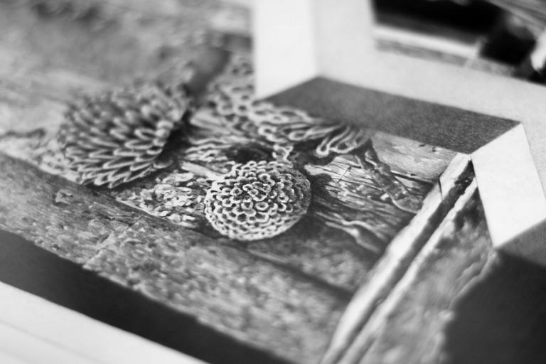 Detalle 'Los Paisajes Isométricos' - Paisaje 6